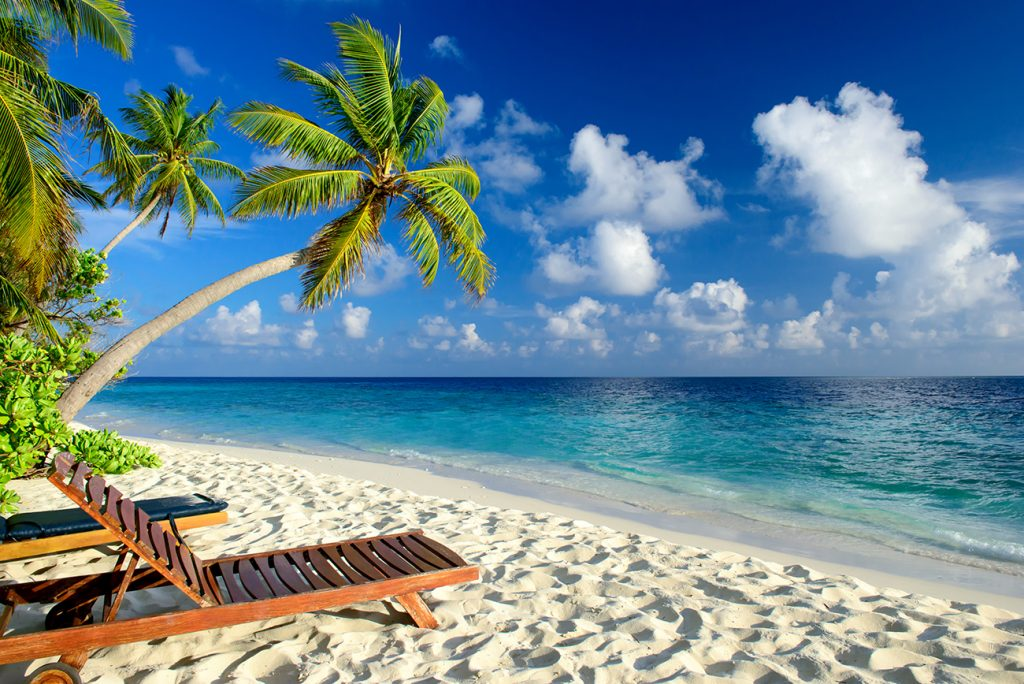 Beach chair on beautiful beach with palm trees